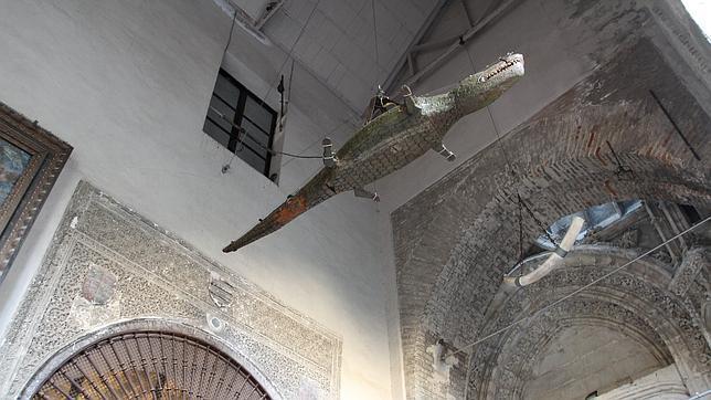 catedral-cocodrilo--644x362